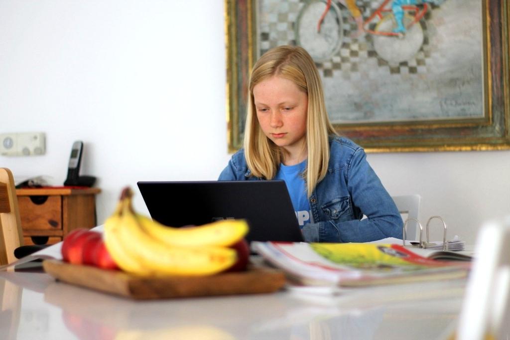 Homeschooling,学校,技術,デジタル,コンピューター,オンライン学習,青い光