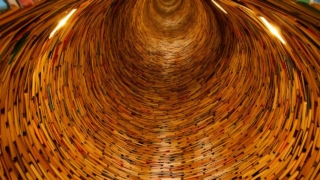書籍 ライブラリ 知識 トンネル 多く 円 教育 学ぶ 学校 スタック スワール 底な 刃 磨く