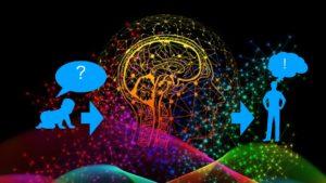 Scapple mindmap logical thinking brain dump 思考 創造