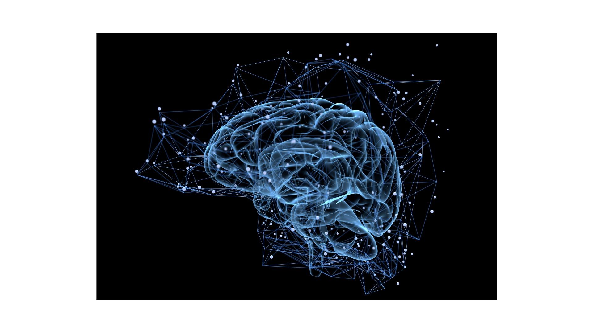 Brain Creative Life online School